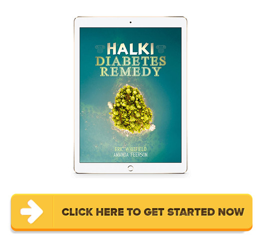Halki Diabetes Remedy PDF